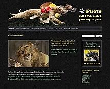 "<a href=""http://photo.royal-lily.com/"">http://photo.royal-lily.com</a>"